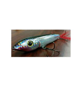 Robertson Topwater Lure Silver Back